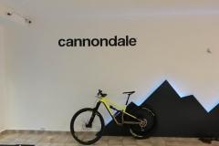 Malschablone für Schriftzug cannondale Take a Ride